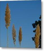 Sawgrass Blooms Metal Print
