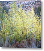 Sawtooth National Forest 2 Metal Print