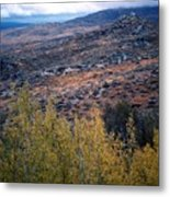 Sawtooth National Forest 1 Metal Print