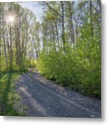 Sawtooth Road Metal Print
