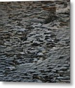 Scaley Log Metal Print