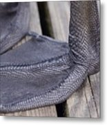 Scaly Canadian Goose Foot - No1 Metal Print