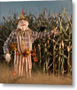 Scarecrow In A Corn Field Metal Print
