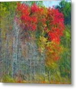 Scarlet Autumn Burst Metal Print