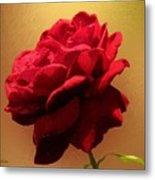 Scarlet Flamenco Metal Print