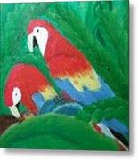 Scarlet Macaws  Metal Print