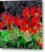 Scarlet Night Metal Print