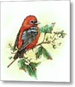 Scarlet Tanager - Summer Season Metal Print