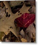Scary Leaves Metal Print