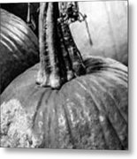 Scary Stem Pumpkin Metal Print