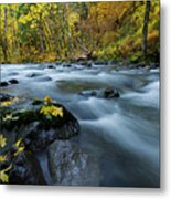 Scattered Along The Way Metal Print