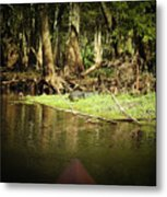 Scenes From A Kayak, No. 15 Metal Print