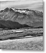 Scenic Alaska Bw Metal Print