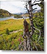 Scenic Alpine Lake And Meadow Metal Print