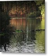 Scenic Elder Lake Metal Print