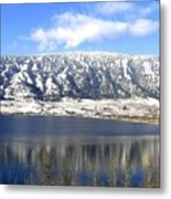 Scenic Wood Lake Metal Print
