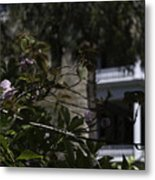Scents Of The South Metal Print