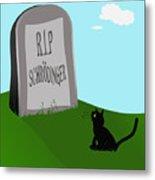 Schoedingers Cat 1 - Schroedinger 0 Metal Print