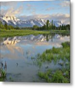 Schwabacher Landing Morning Metal Print