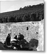 Scooter In Wurzburg Metal Print