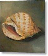 Scotch Bonnet Seashell Metal Print