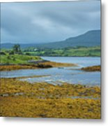 Scottish Cove Metal Print