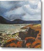Scottish Lowlands Metal Print