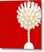 Scrub Brush Metal Print