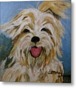 Scruffy Metal Print