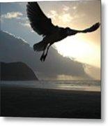 Sea Bird 3 Metal Print