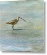 Sea Bird Metal Print