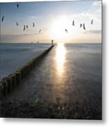 Sea Birds Sunset. Metal Print