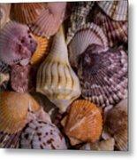 Sea Bones 20 Metal Print