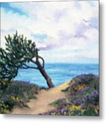 Sea Coast At Half Moon Bay Metal Print