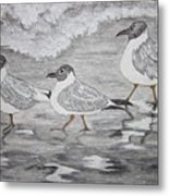 Sea Gulls Dodging The Ocean Waves Metal Print