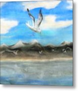 Sea Gulls Metal Print