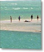 Sea Life Salt Life Key West Style  Metal Print