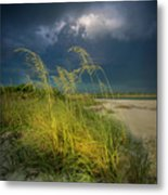 Sea Oats In The Storm Metal Print