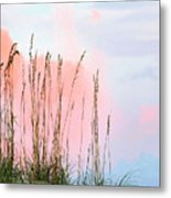 Sea Oats Metal Print by Kristin Elmquist