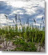 Sea Oats Sand Dune Sky Metal Print