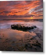 Sea Of Red Metal Print