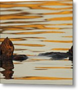 Sea Otter Laying Low In The Water Metal Print