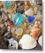 Sea Shells Art Prints Blue Seaglass Sea Glass Coastal Metal Print