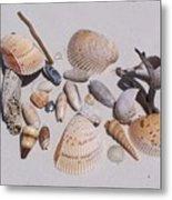 Sea Shells On White Sand Metal Print