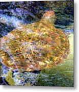 Sea Turtle In Hawaii Metal Print