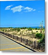 Sea Walk Metal Print
