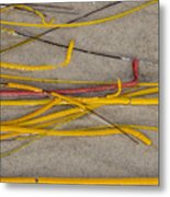 Sea Whip Coral Metal Print
