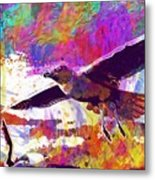 Seagull Birds Flight Wings Freedom  Metal Print