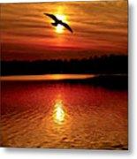 Seagull Homeward Bound Metal Print