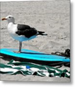 Seagull On A Surfboard Metal Print